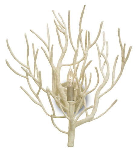 Currey And Company 5158 1 Light Eventide Wall Sconce In White Coral